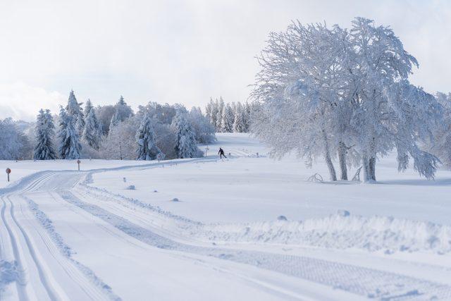 le ski de fond aux champis à Lispach
